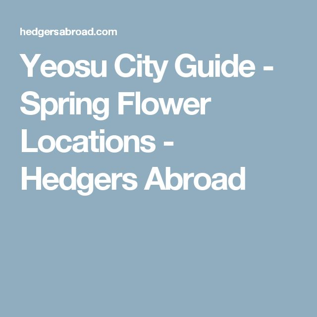 Yeosu City Guide - Spring Flower Locations - Hedgers Abroad