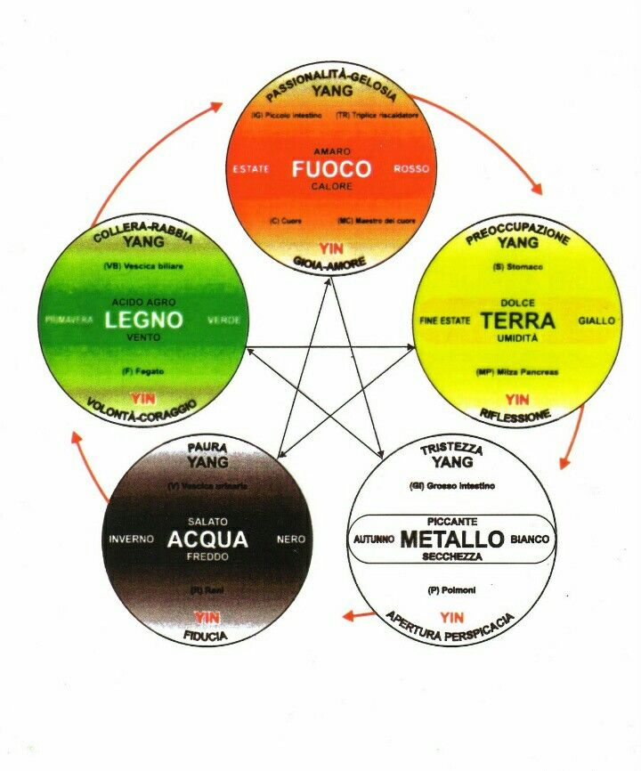 I 5 elementi Ciclo di generazione... In senso orario