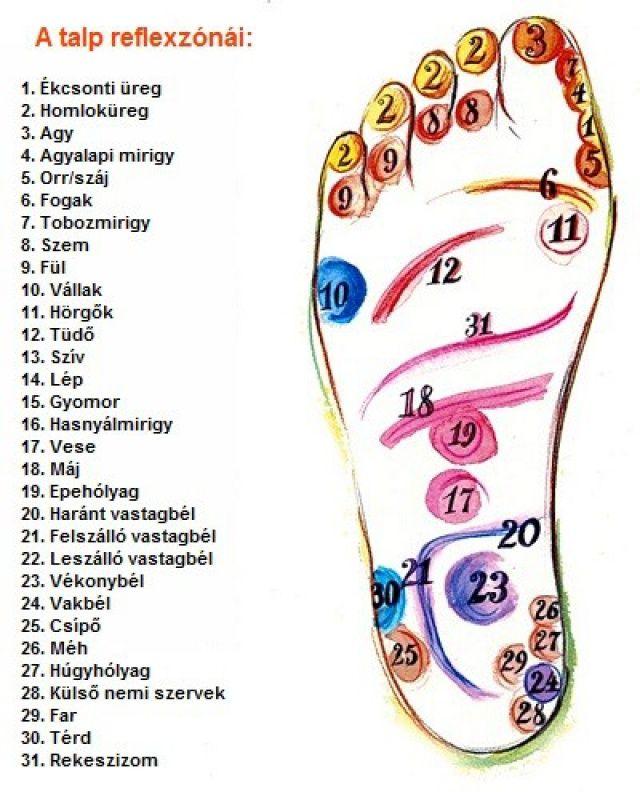 A lábfej és a test kapcsolata | Mindenegyben Blog