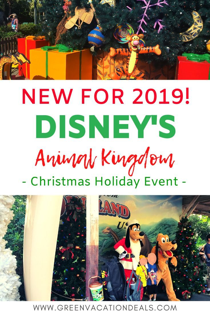 Christmas Vacation Deals 2019 New 2019 Animal Kingdom Christmas Holiday Event | The Best of