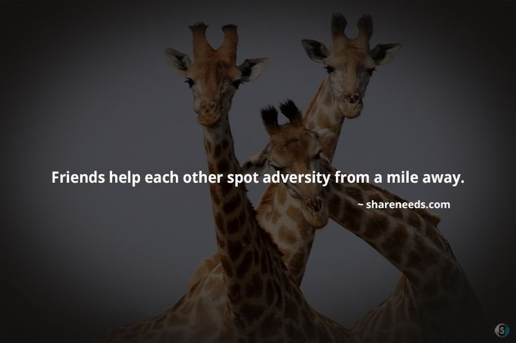 Friends help each other spot adversity from a mile away.  #friendshipquotes