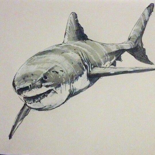 As 185 Melhores Imagens Em Shark Tattoos No Pinterest