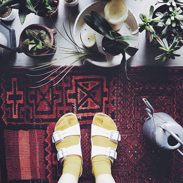 . 黄色い二股の靴下買ってみたんだけど、履いたらなんだかバナナみたい〜 . #マヌケっぽい? #まぁいっか  . . #artsandsience #アーツアンドサイエンス #靴下 #ビルケンシュトック #サンダル #sandals #靴 #shoes #植物 #plants #足元 #足元倶楽部 #キリム #日々 #暮らし #vscocom #vscojapan #インテリア #interior #green #グリーン
