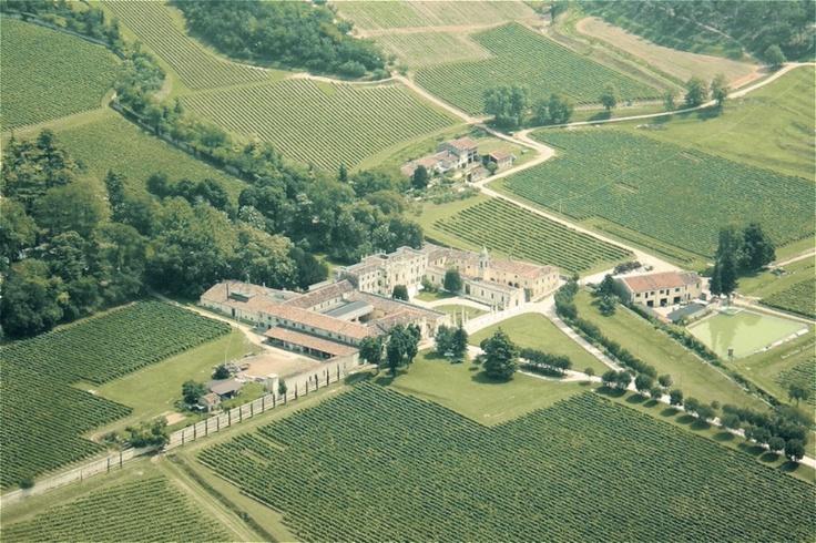 Villa Mosconi Bertani - Valpolicella