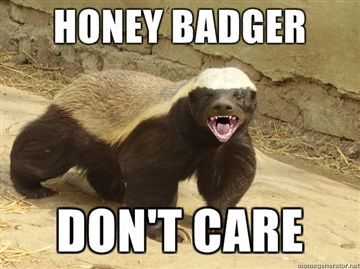 ...and just like our wise friend the honey badger, I DON'T CARE what states you've been to!!!