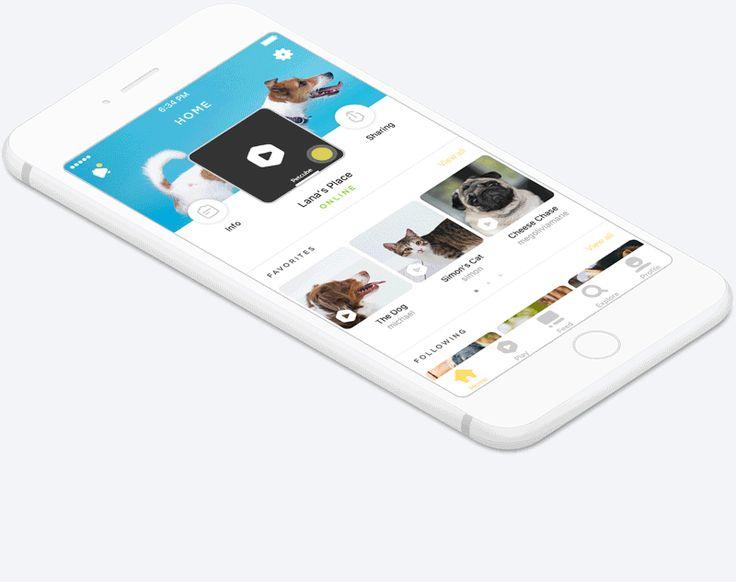 Petcube for iOS on Behance