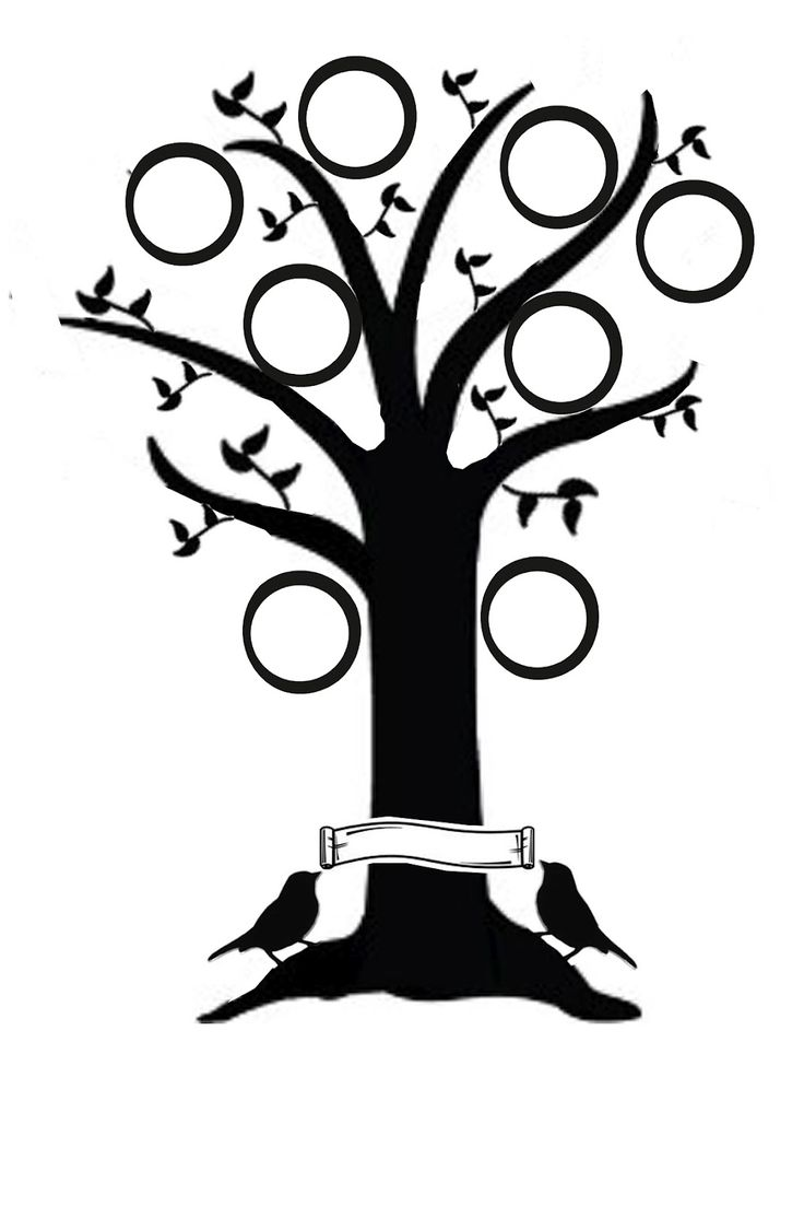 8 best family tree images on pinterest family trees your family