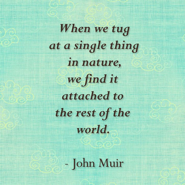 Famous Wildlife Conservation Quotes: John Muir Quote