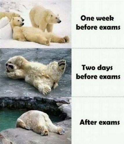 One week-i have time to study 2-days before-mayb i should study? NAH! After- yeah i failed :-(