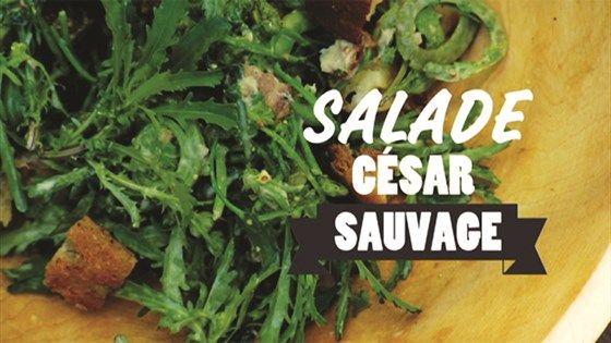 Salade césar aux têtes de violon