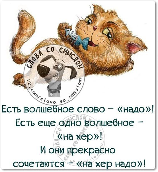 Анна Зайцева | ВКонтакте