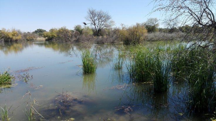 on the border of botswana
