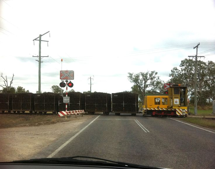 cane train crossing on bruce highway, qld