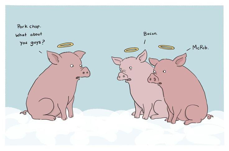 BACONLittle Pigs, Sadness Piggies, Liz Climo, Funny Stuff, Animal Friends, Lil Piggies, Pork Chops, Poor Piggies, Pigs Heavens