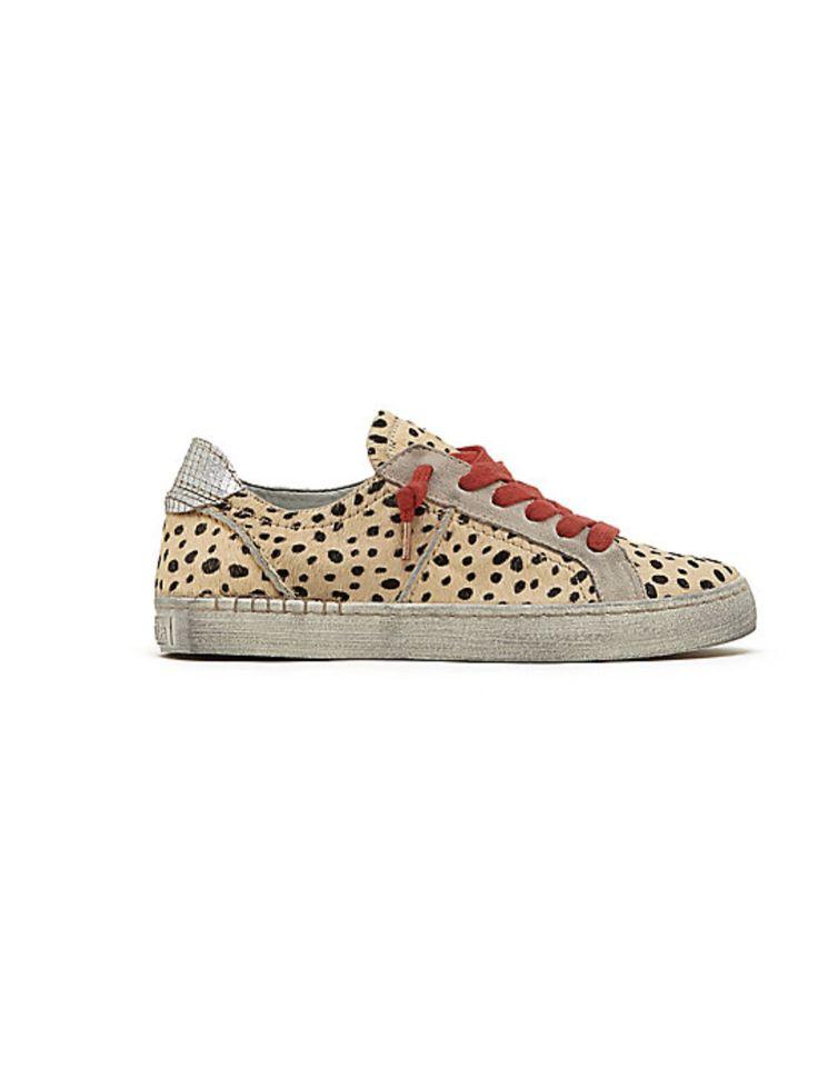 Zalen Leopard Sneaker from ascot   hart