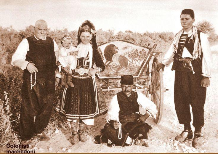 Macedonian settlers