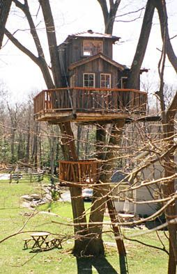Tree fort/house! The main floor is reached by a series of ladders that break up the 18 foot high climb. The 2nd story sleeping loft is accessed by a hand built spiral stair case.