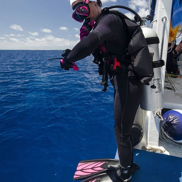 It;s time to dive! #ScubaDiving #Underwater #Experience Photo by  @zeaglesystems