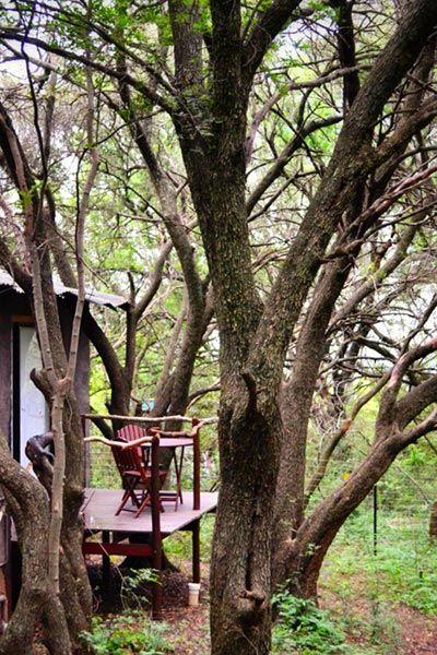 Lodge set in unspoilt bush with abundant bird and animal life