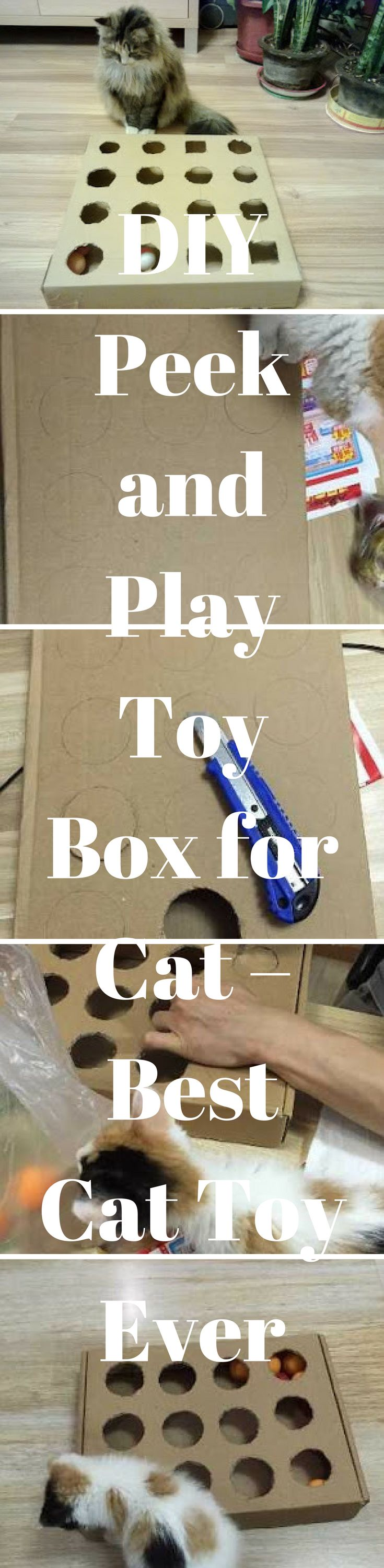 #diy #cat #cattoy #toys #peek&play  Cats have an instinctual desire to watch cracks and crevices, especially when they know that something is hiding just beyond their sight. The Peek-A-Play Toy Box is designed to build on your cat's instinct by partially hiding some of your cat's favorite toys, and your cat will go crazy fishing them out. And it is so easy to DIY! It is especially great for those times when you have to leave your cat home alone, because this toy will keep your cat