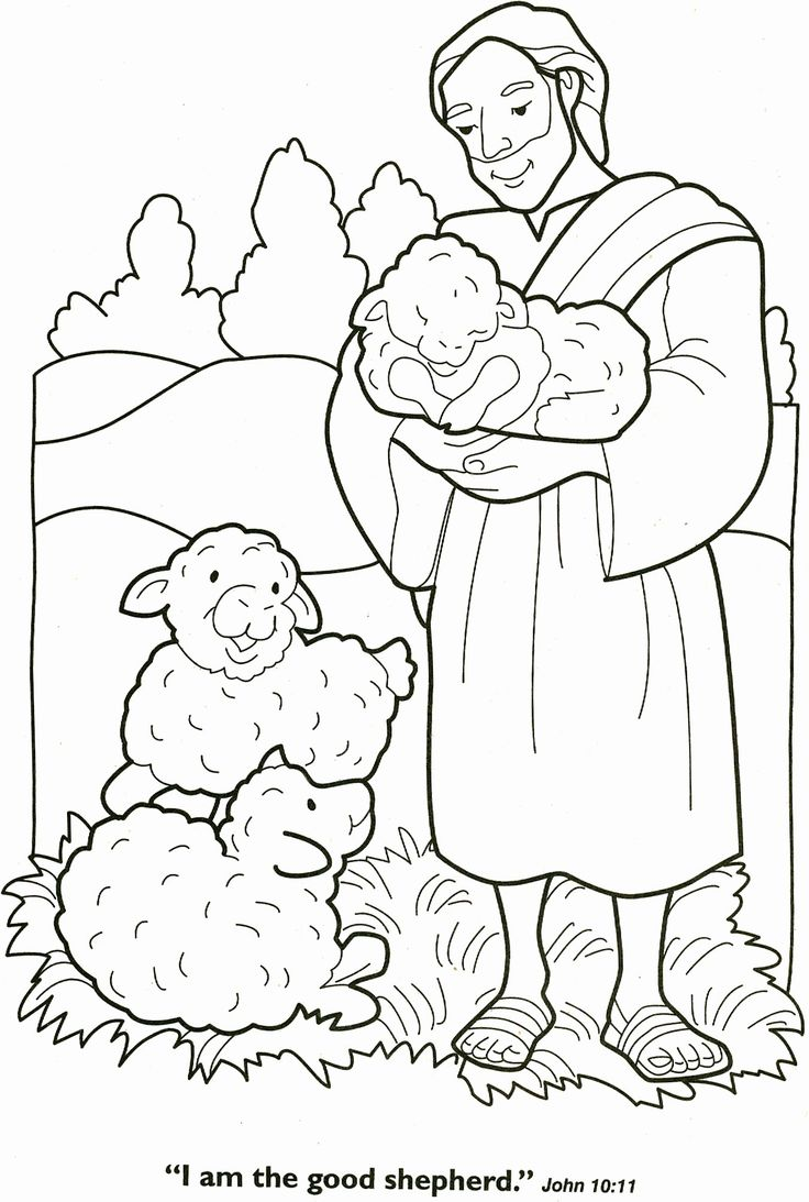 Free Printable Sheep Colouring Pages Lamb Coloring Easter