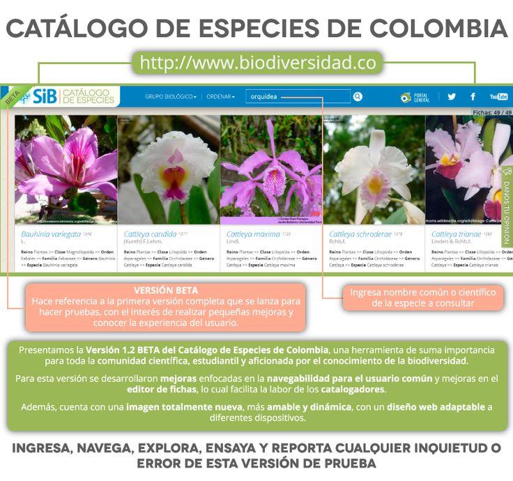 Lanzamiento de la v.1.2 del Catálogo de Especies de la Biodiversidad de Colombia