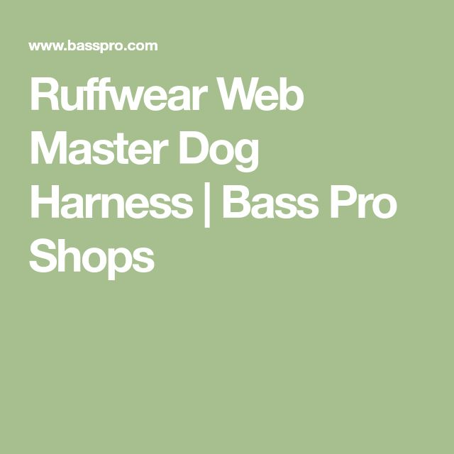 Ruffwear Web Master Dog Harness | Bass Pro Shops
