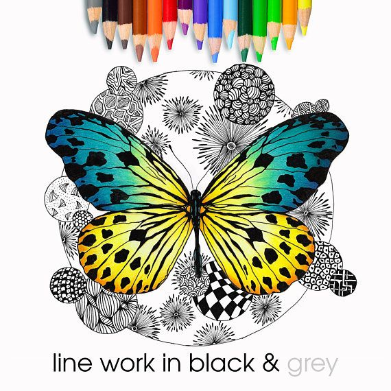 Art Therapy Colour In Butterfly Coloring Page Digital