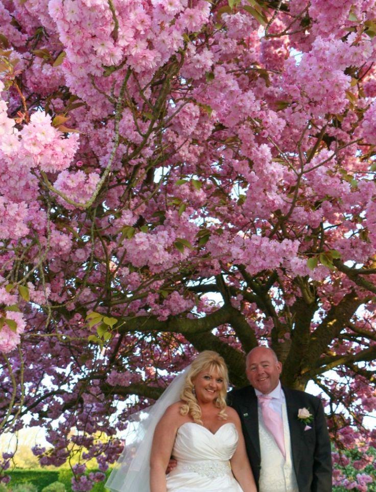 Spring Wedding Blossom - Jo Neville Photography