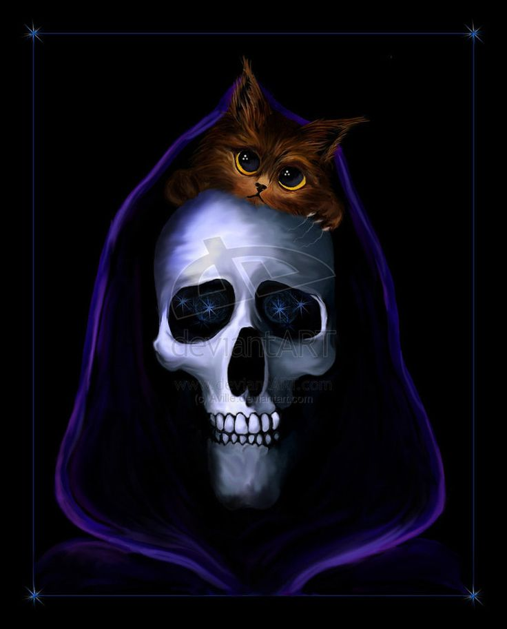 """Cats,"" said Death. Cats are nice.""  Death of Discworld by Aville"