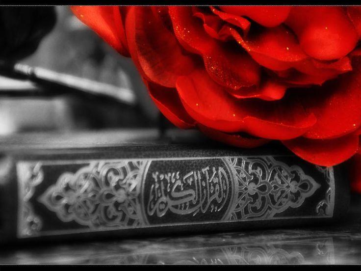 القرآن الكريم  Holy Qur'an