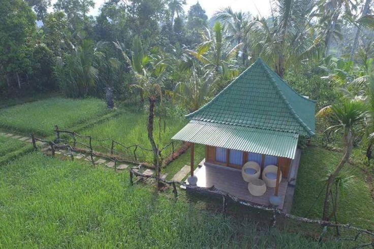 Bali Lovely Rice Field Cottage - Häuser zur Miete in