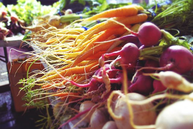 can organic farming feed the world Organic farming can yield up to three times as much food as conventional farming on the same amount of land -- according to new findings which refute the long-standing assumption that.