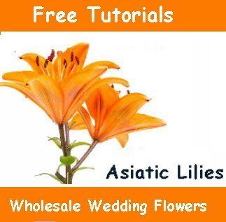 Bulk Discount Flowers - Buy Wedding Flowers Online - Free Flower Tutorial - http://www.wedding-flowers-and-reception-ideas.com/make-your-own-wedding.html