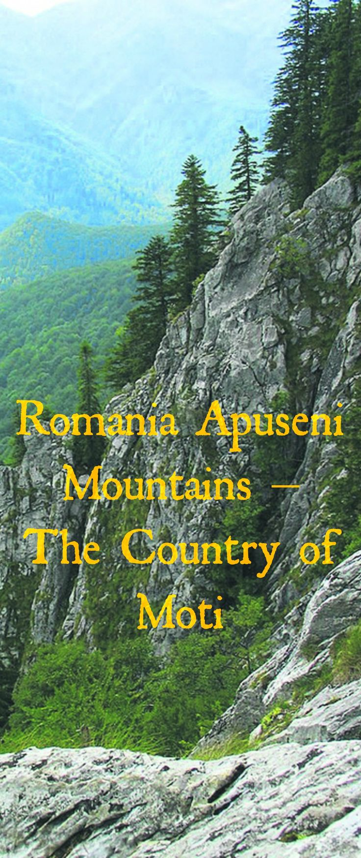 Romania Apuseni Mountains – The Country of Moti   The cave fauna is the main attraction of the Apuseni Mountains, with some of the wild caves sheltering rare bat species, such as the dwarf bat (Pipistrellus pipistrellus).