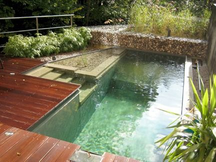 Eco-Friendly Natural Swimming Pools Natural pools eliminate harsh chemicals like chlorine by combining the cleaning properties of plants with bio-filtration and skimming systems. The pools are separated into two zones, the plant zone and the swimming zone.