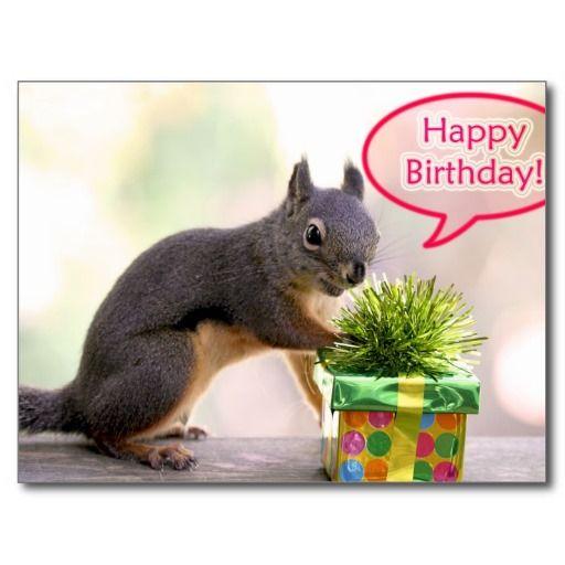 Happy Birthday Squirrel
