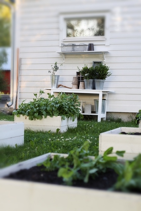 White raised beds and potting bench