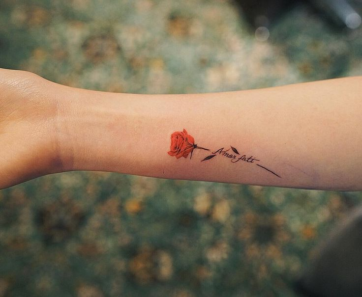"2,534 Likes, 14 Comments - Nando Tattoo (@nandotattooer) on Instagram: ""Amor fati . .…"""
