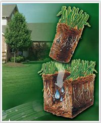 Aeration System.  Let Clearwater Irrigation open up your soil and help control thatch with power core aeration. We'll create thousands of growth pockets to catch water, air and fertilizer, helping to increase rooting.