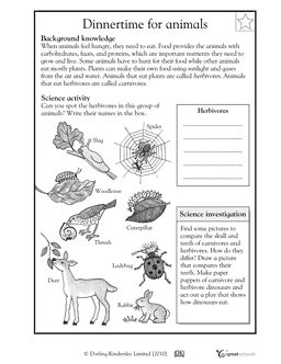 Fourth Grade Science Worksheets | GreatSchools | Fourth ...