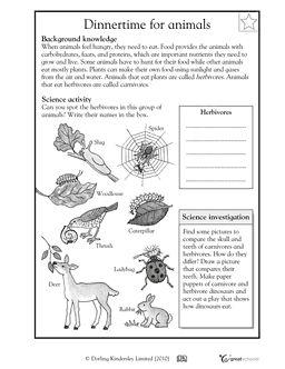 animal dinnertime worksheets activities greatschools life science pinterest. Black Bedroom Furniture Sets. Home Design Ideas