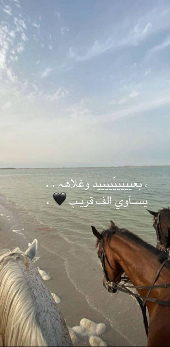 Pin By Yazz Al On عربي Iphone Wallpaper Quotes Love Cover Photo Quotes Love Smile Quotes
