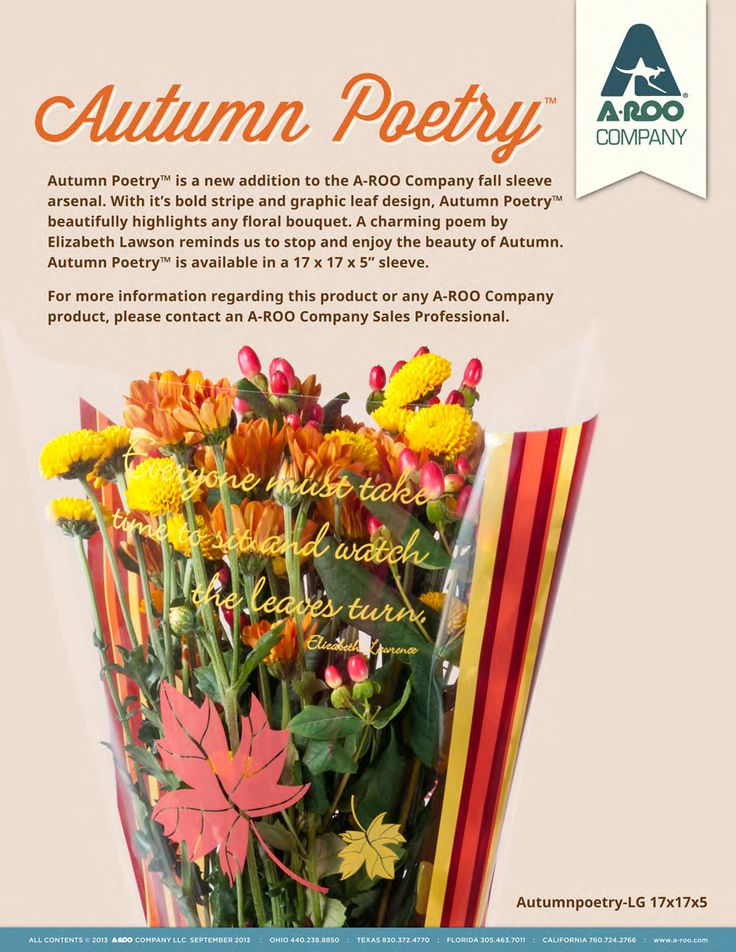 With it's bold stripe and graphic leaf design, Autumn Poetry beautifully highlights any floral bouquet