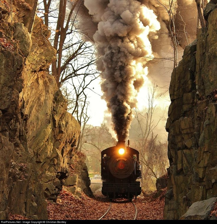 RailPictures.Net Photo: WWRR 58 Wilmington & Western Steam 0-6-0 at Wooddale, Delaware by Christian Bentley