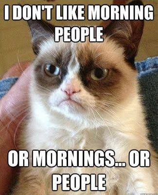 My husband IS Grumpy Cat! haha! Especially this meme. :-P Did you know Grumpy Cat is actually a girl cat and she's much smaller and cuter in real life than you'd think. AND she lives in Phoenix! What??! Random fact of the day.