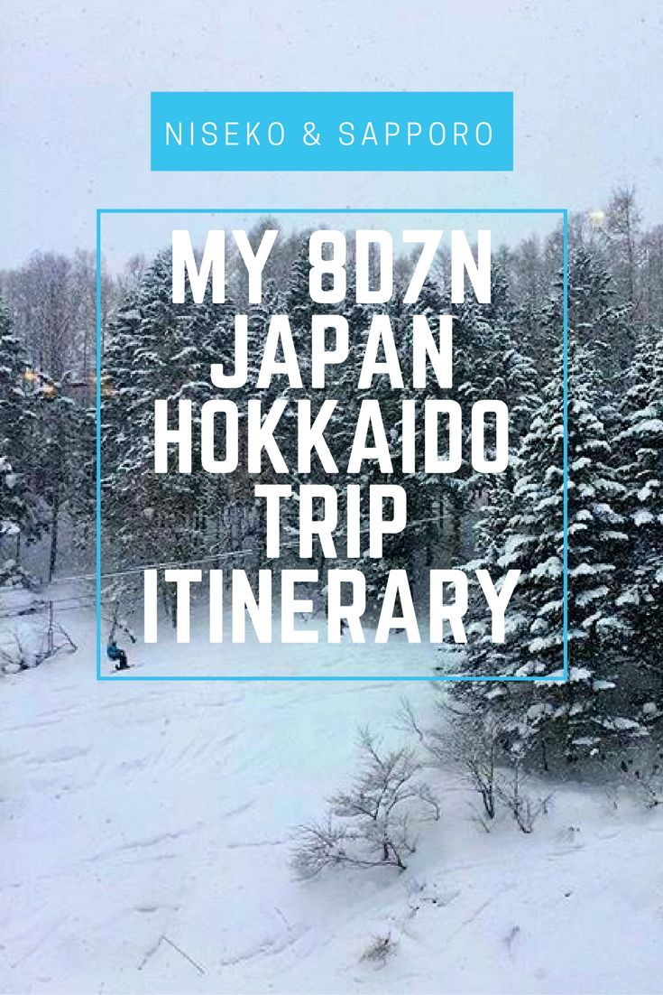 My 8D7N Japan Hokkaido Winter Trip Itinerary - Ski at Niseko and Free & Easy at Sapporo