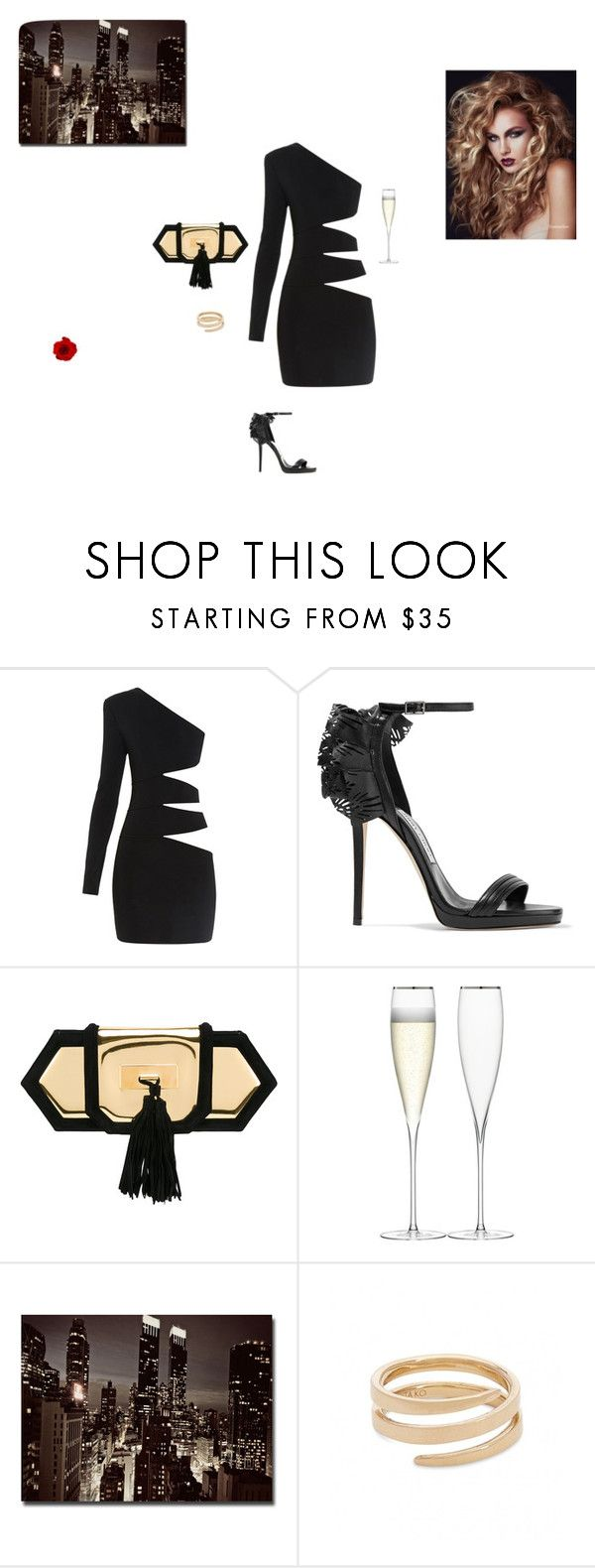 """Untitled #149"" by sb187 ❤ liked on Polyvore featuring Balmain, Jimmy Choo, LSA International, Trademark Fine Art and Anita Ko"