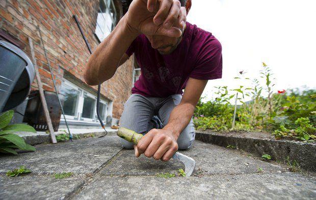 Fyld fugerne på terrassen og undgå ukrudt