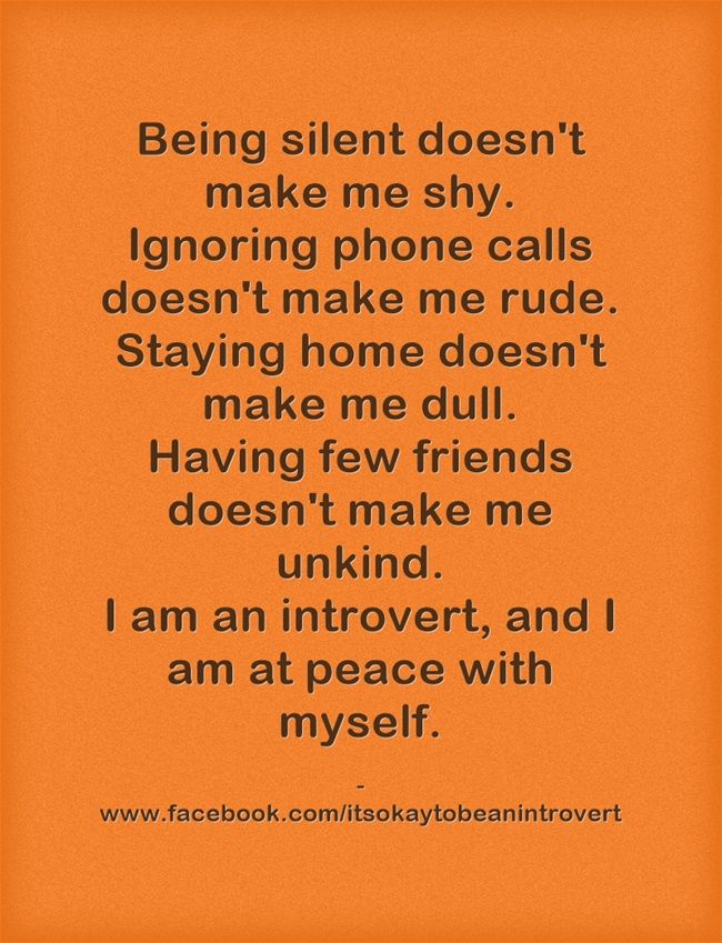 I'm not an introvert but I totally understand now. Maybe as I get older I'm slightly more of an introvert than before...